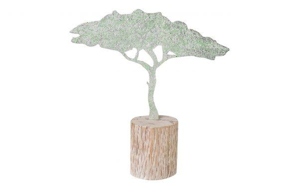 Baobab AFRICAN SUMMER