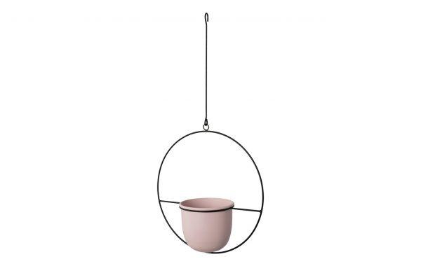 Hanging Basket COLOR